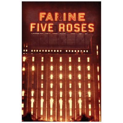 FARINE FIVE ROSES 2012 - rouge